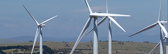 Renewable Energy & Sustainability